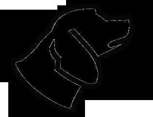 Standard Dog PK
